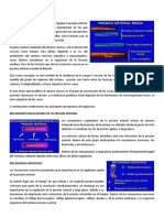 Conferencia 5.pdf