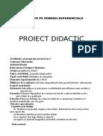 0proiectintegrat