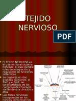 Tejido Nervioso Obst 2016