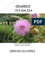 Germano Guilherme - Sois Baliza