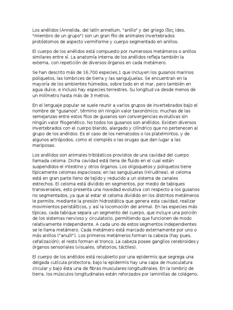 Excepcional Anatomía Interna De Lombriz De Tierra Ideas - Imágenes ...