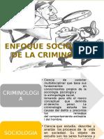 Enfoque Sociologico de La Criminologia y Seguridad Ciudadana