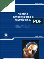 Seminario inmunohisto