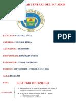 Sistema Nervioso Anatomia