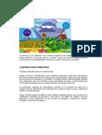 4.-LA BIOMASA.pdf