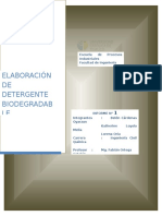 2 - Detergente Biodegradable (1)