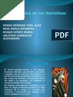 Quimica de Las Hortalizas Final