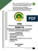 Informe Nº 06