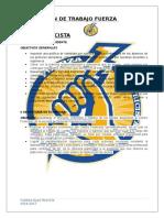 Plan Fuerza Electricista (Proyeccion 2016-2017).