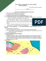 PRACTICA2A.docx