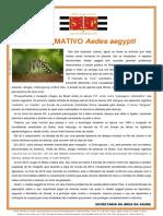 Informativo Aedes Aegypti