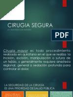 CIRUGIA SEGURA ULTIMO.pdf