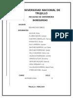 Informe de Microbiologia (1)