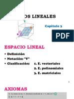ESPACIOS_LINEALES_2014_II (1)