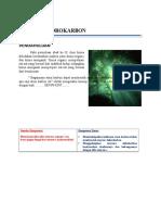Senyawa Hidrokarbon Modul