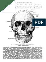 Tratado de Anatomia Humana Quiroz Tomo I_122