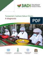 Cashew Value Chain Diagnostics