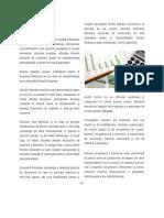 Cap.10.1.Economie-partea1 Fîntînele.pdf