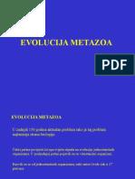 09 Podrijetlo metazoa