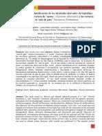 Informe 4 Derivados de Alcaloides Tropánicos