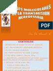 3. GENETICA  MOLECULAR (1) (1)