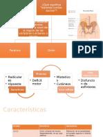 Hidrocefalia Hipoxia Cererbal