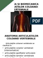 Anatomia Şi Biomecanica Articulaţiilor Coloanei Vertebrale