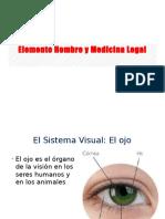 Elemento Hombre y Medicina Legal2 - Accidentes de Tránsito