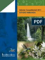 Informe Geoambiental Miranda