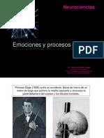 Presentación Emociones 2014 BN