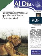 infecciones intestinales1
