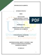 Informe de Practicas Microbiologia de Alimentos