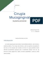 Cirugía Mucogingival Informe