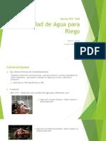 Calidad de Agua Para Riego-nch1333