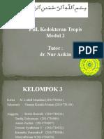 Kelompok 4. Modul 2 TropMed.