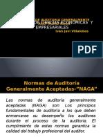 Normas de Auditoria Naga