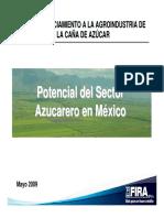 Potencial Del Sector Azucarero en México