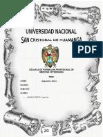 Charla a Alumnos Del Colegio San Carlos