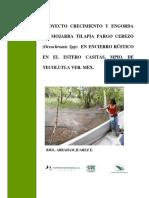Proyecto Casitas (1)
