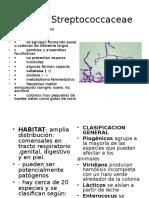 Familia Streptococcaceae