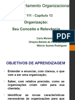 CAP 13 - REVISADO - Comportamento Organizacional.ppt