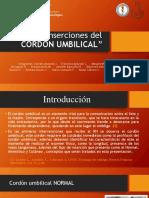 Preclinico Grupo 1, Tipos de Inserciones Del Cordon Umbilical