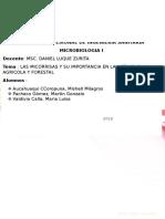 Las Microrisas y Su Importancia en La Actividad Agricola y Forestal