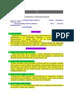 Anatomía Topográfica Planos de Sustentación