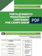 2.4-FortalecimientoPedagogicoporCampoDisciplinar