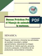 Buenas Prácticas Pecuarias en El Manejo de Animales UNIDAD II-2