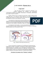 Ficha Informativa Frentes