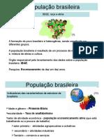 População Brasil