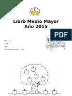 Libro m.mayor 2015 Parte 1