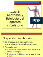 aparato_circulatorio